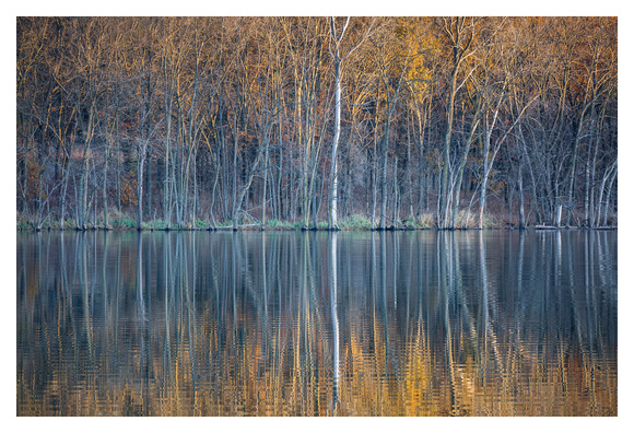 Sunlit Reflections - Lake Darling State Park, Iowa
